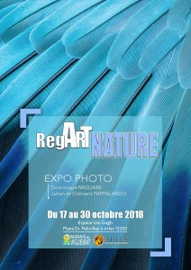 Affiche-expo-regARTNATURE