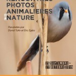 Affiche-rencontres-photos-animalieres-et-de-nature-2019