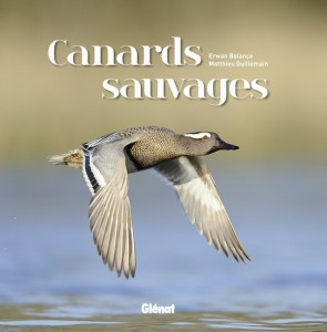 501 CANARDS SAUVAGES[LIV].indd